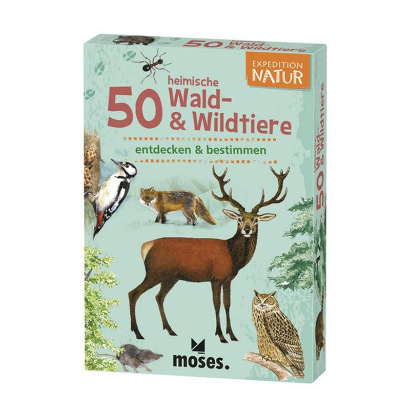 WaldundWildtiere
