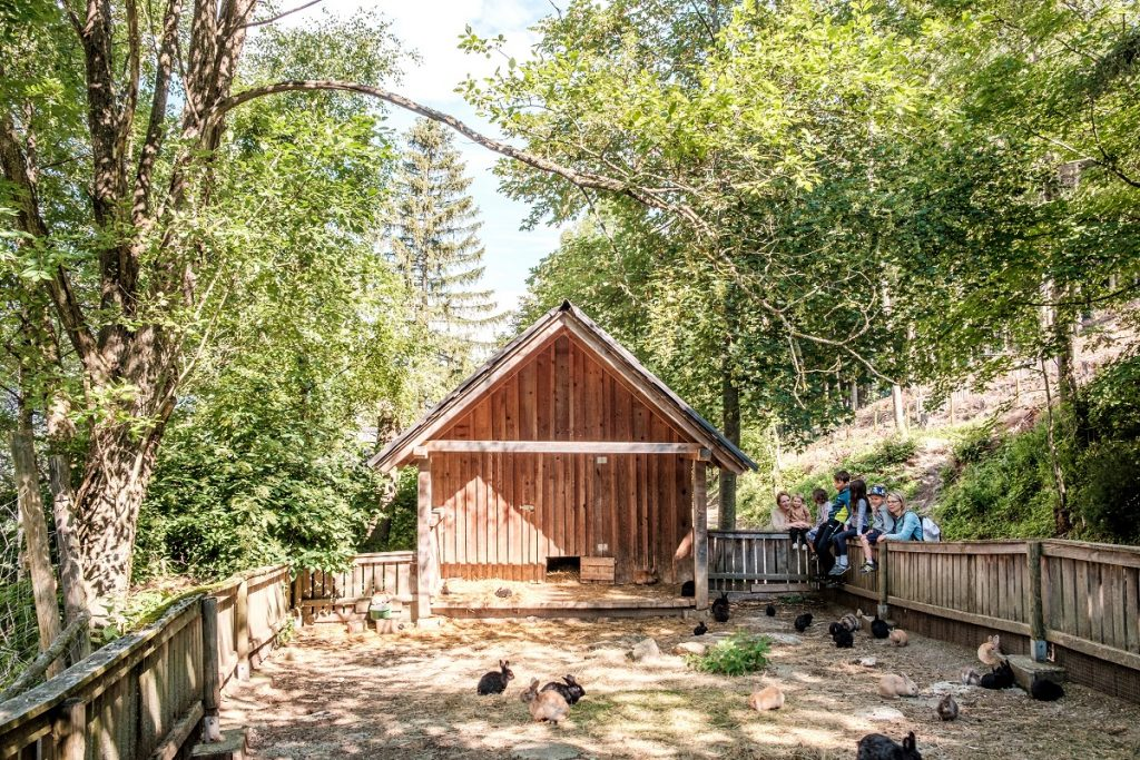 Oekopark Hochreiter 421 min